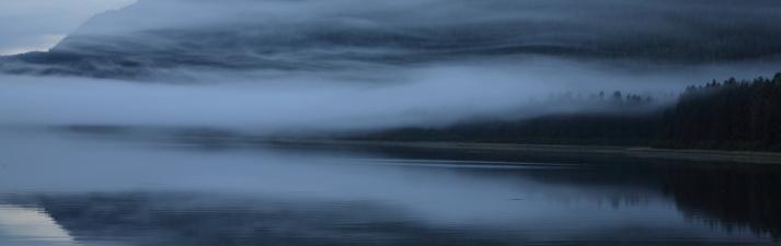 Morning fog, Tracy Arm, Alaska.