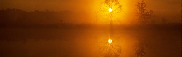 Lake sunrise, southern Indiana.